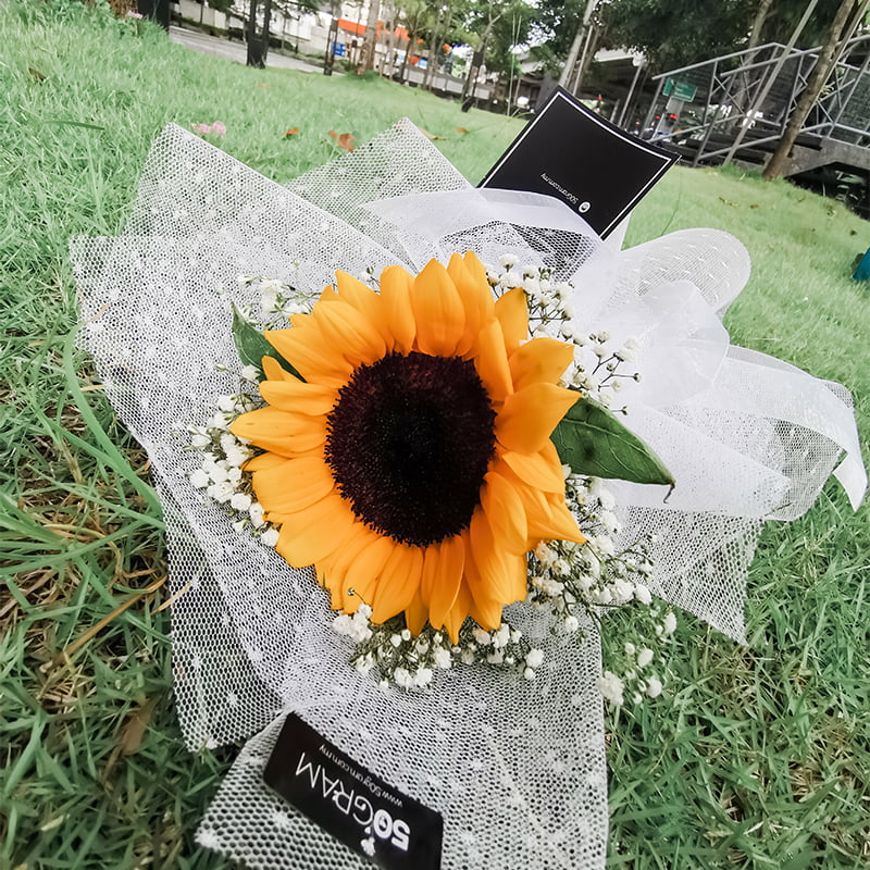 sunflower special white2