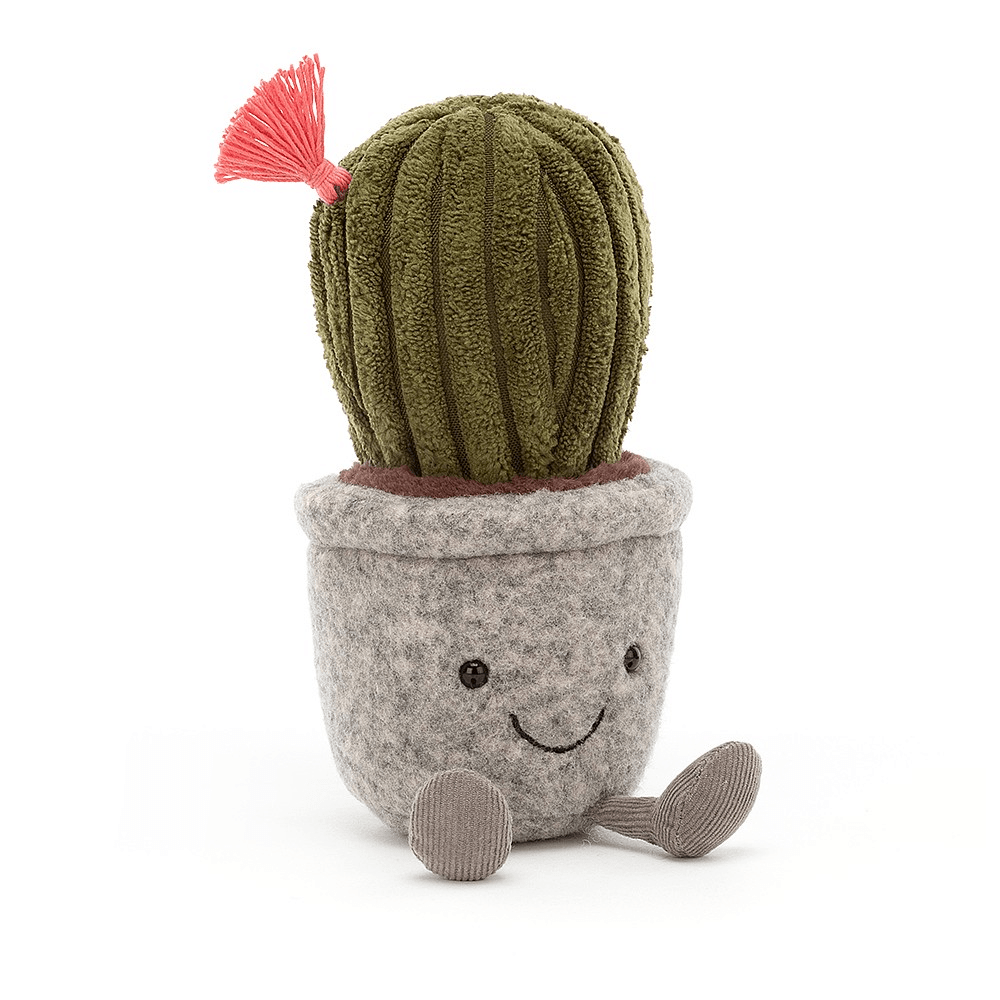 Silly Succulent Cactus