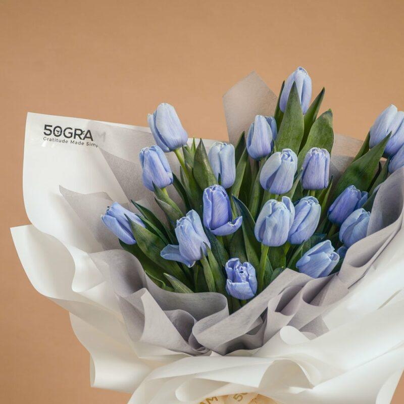 Blue Tulips 20 3