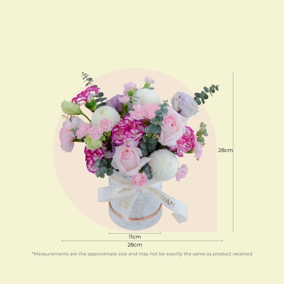 Blossom Box 6s
